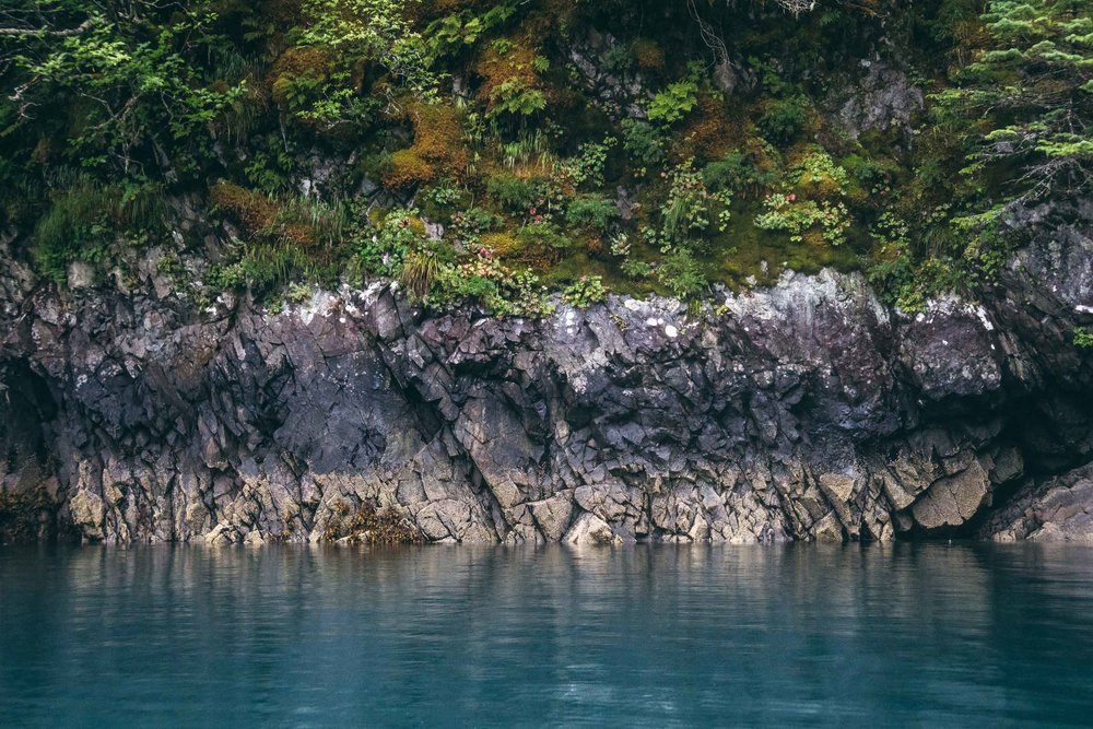 Charles Post | Wild Salmon | Modern Huntsman