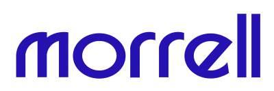 Morrell-Logo-Blue-small.jpg