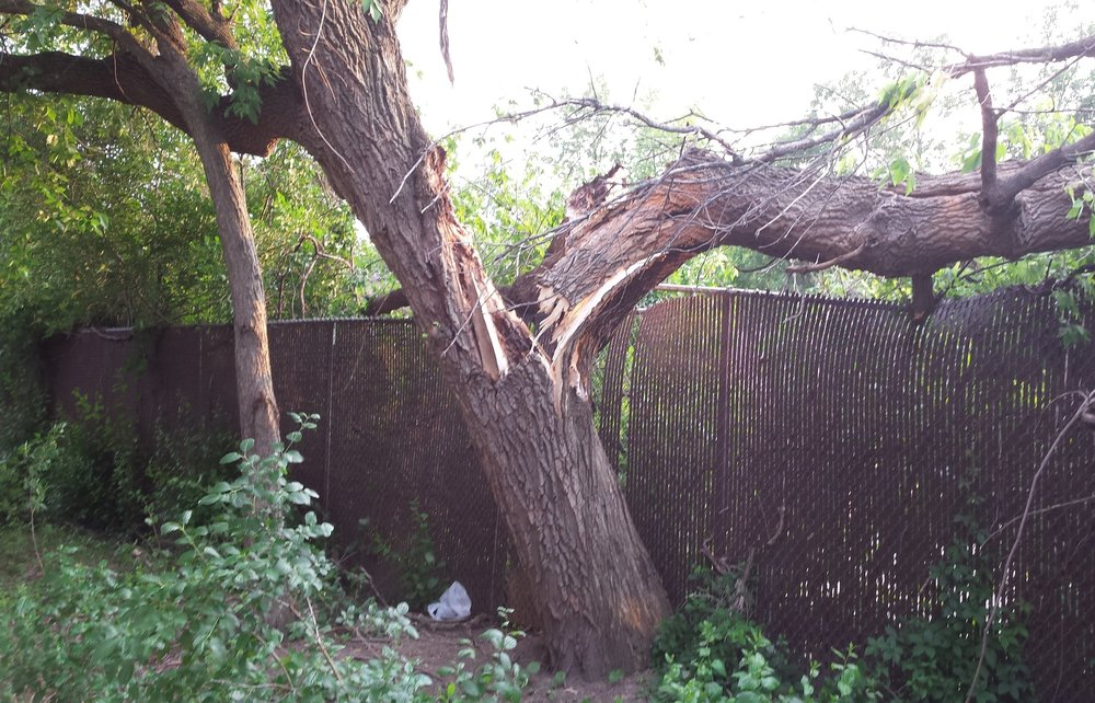 EMERGENCY STORM DAMAGE - When severe storms strike they can cause major damage to property and homes. Dorshak Family Tree Service has complete 24 hour Emergency Storm Damage services to help restore your property after a storm. Click here for more about Emergency Storm Damage.