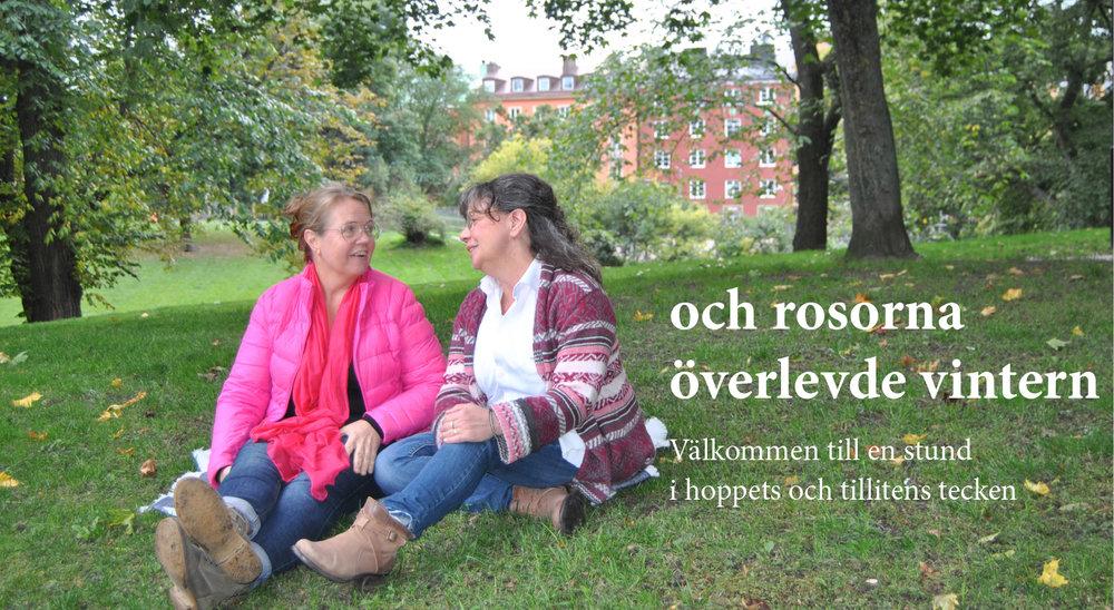 och rosorna överlevde för webben.jpg