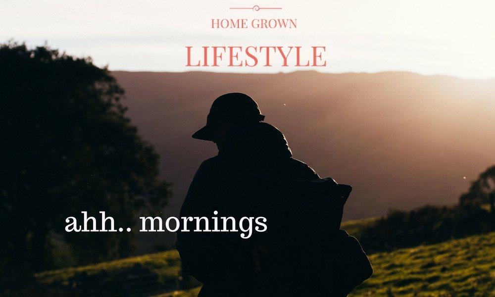 ahh.. mornings.jpg