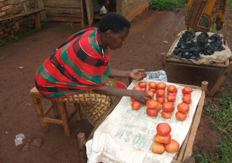 Microenterprise development in rural Burundi