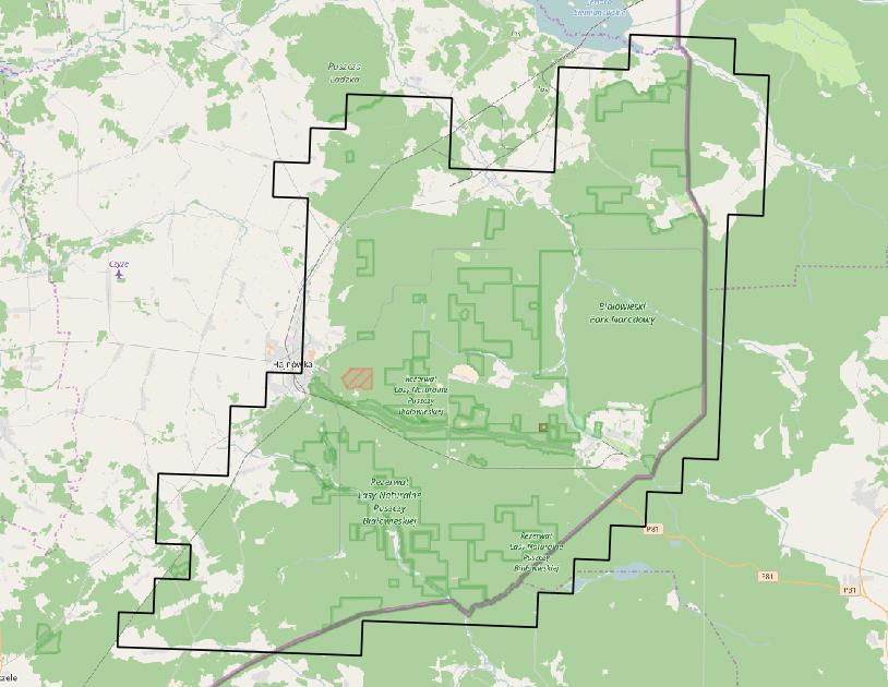 L'area della foresta di Białowieża evidenziata sulla cartina riportata in gioco. Fonte: geoboxers.com