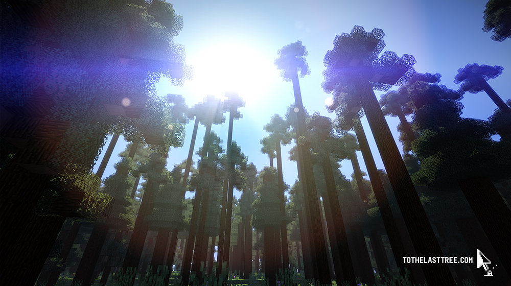 """Screenshot from the """"Bialowieza Forest"""" Minecraft map / NOT AN OFFICIAL MINECRAFT PRODUCT"""