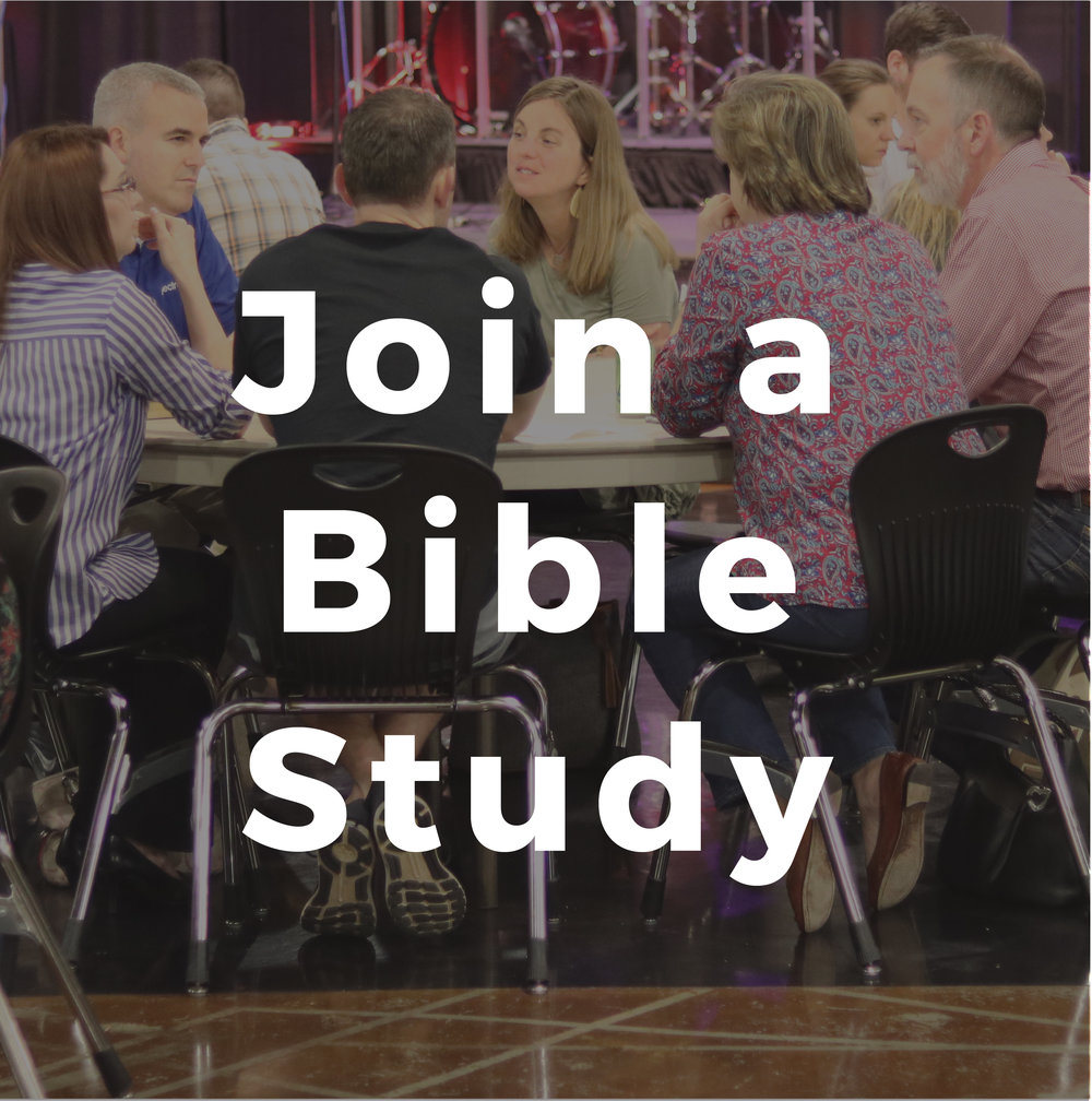 Bible Study Next Step@4x-100.jpg