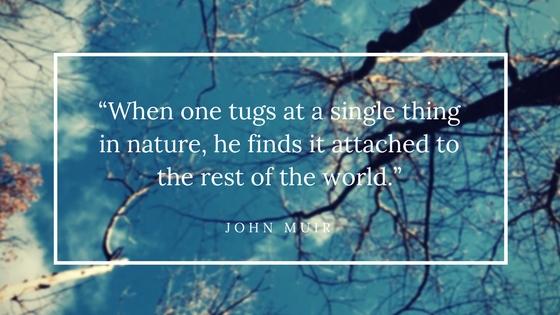 -John Muir.jpg