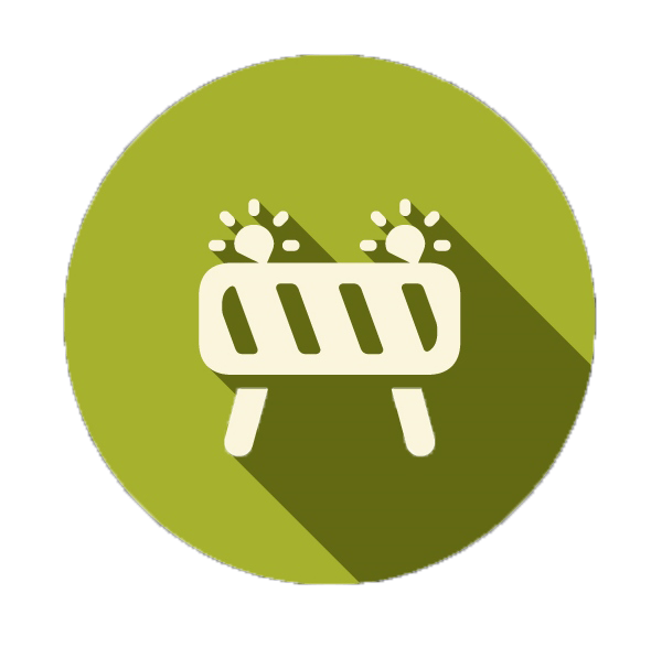 barrier icon - no background.png