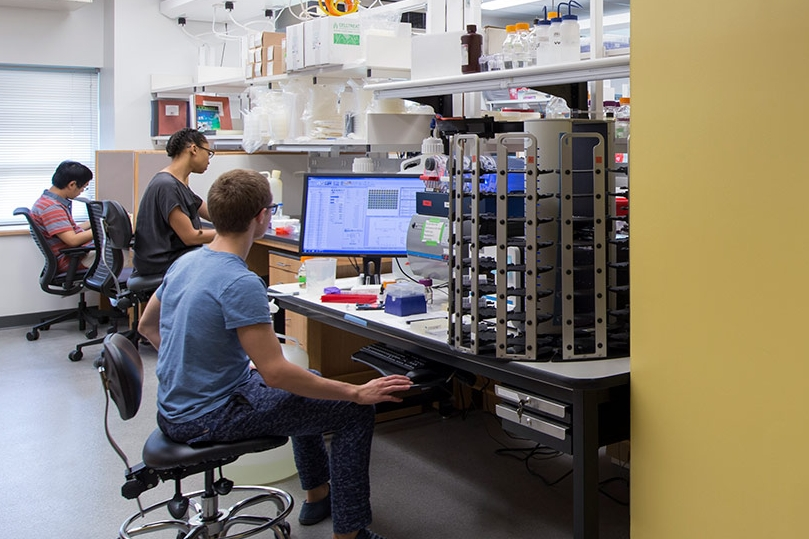 HMS, Systems Biology Labs
