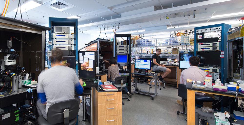 Sabatini Neurobiology Lab