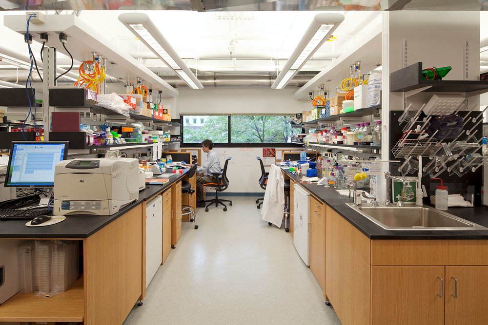 Haigis Cell Biology Lab