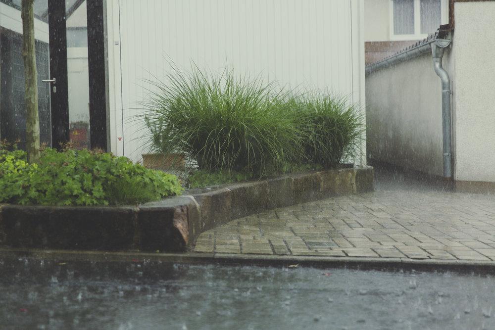 TAAL 0917 weather2.jpeg