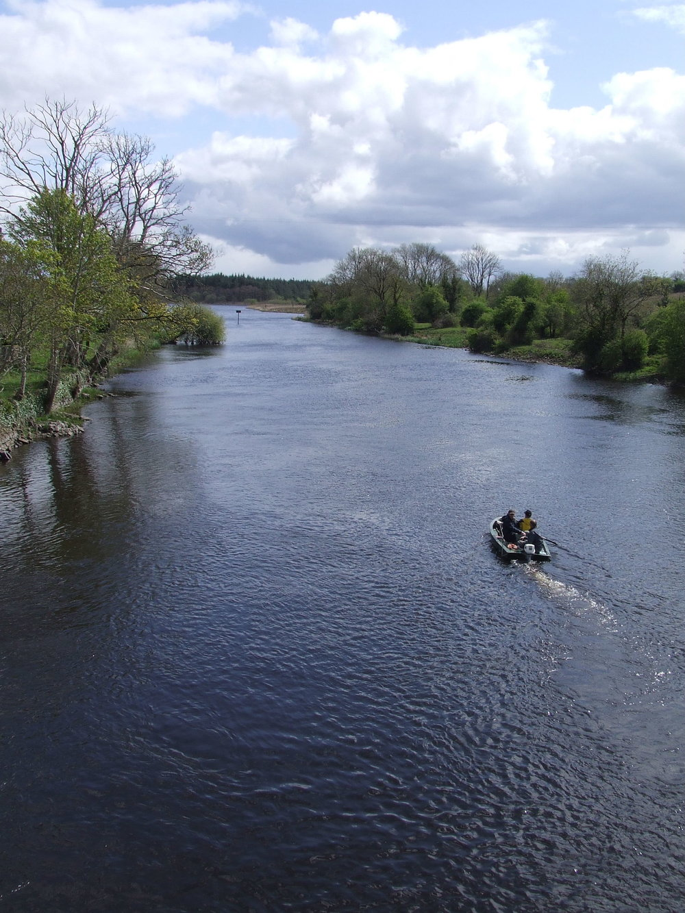 114 River_Shannon_from_Drumsna_bridge.jpg