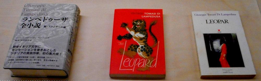 104 translations of Il Gattopardo public domain photo of books.jpg