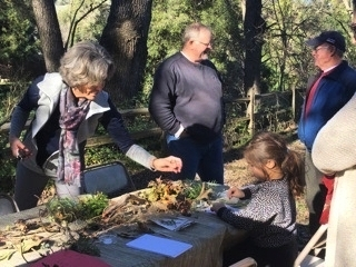 Celebrating Nature and Art at Leigh Creekside Park, January 2017.