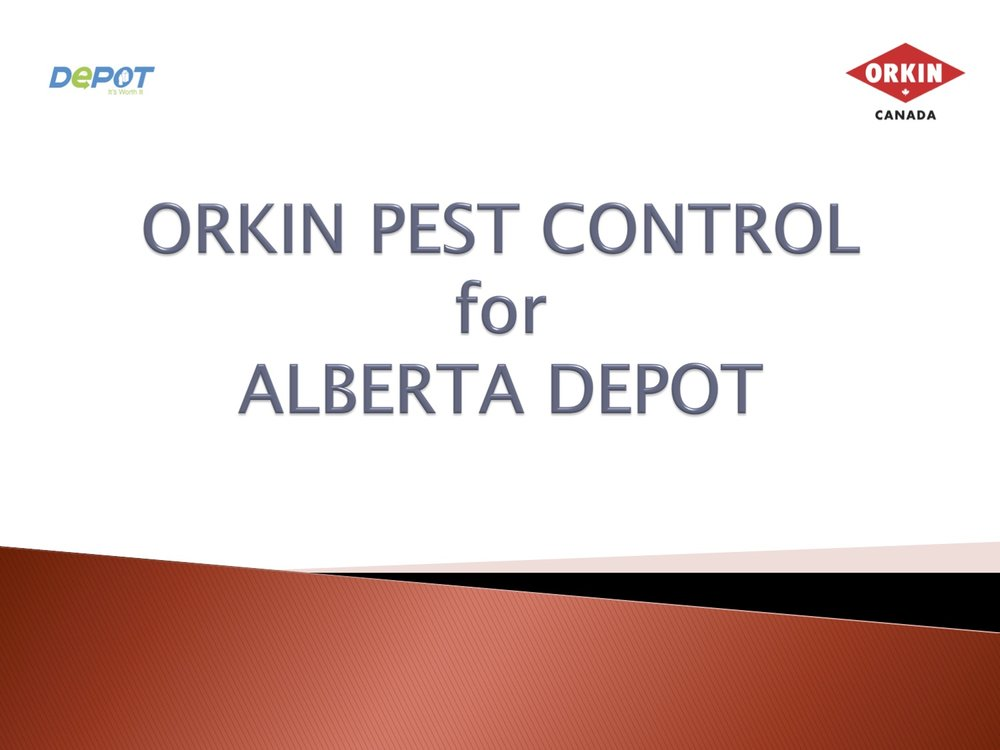 Jon Nicholls. Western Canadian Sales Manager  Orkin Pest Control for Alberta's Depot