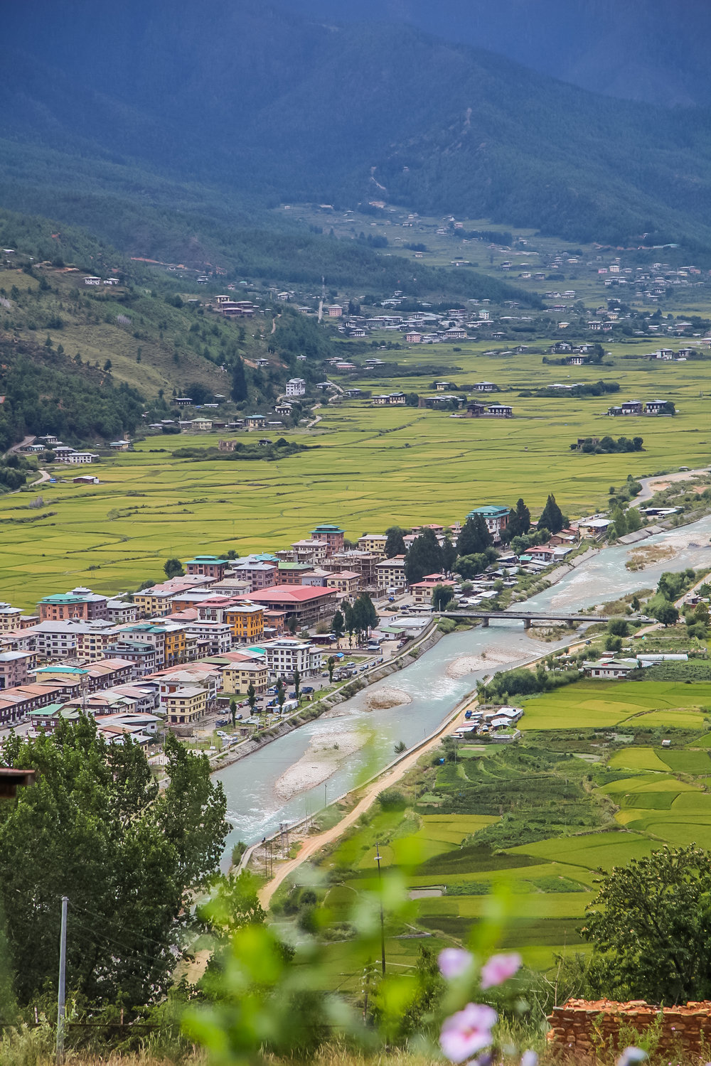 The town of Paro in the valley.
