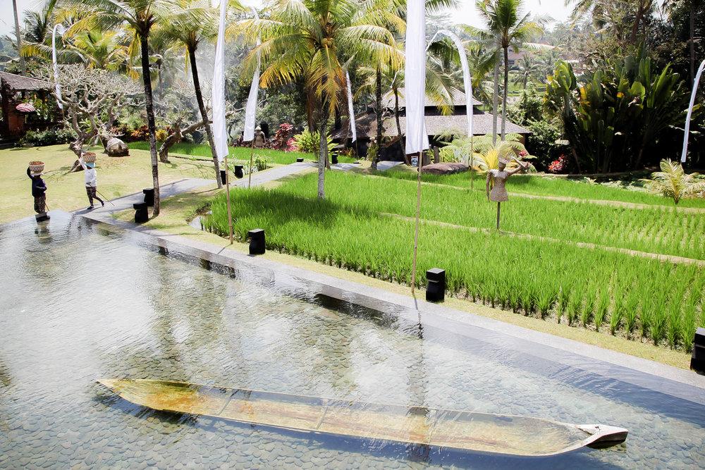 Bali-012.jpg