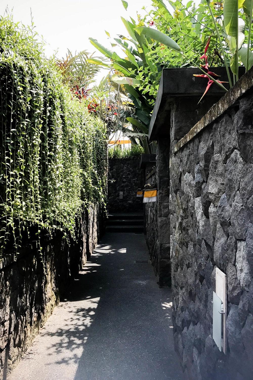 Bali-018.jpg