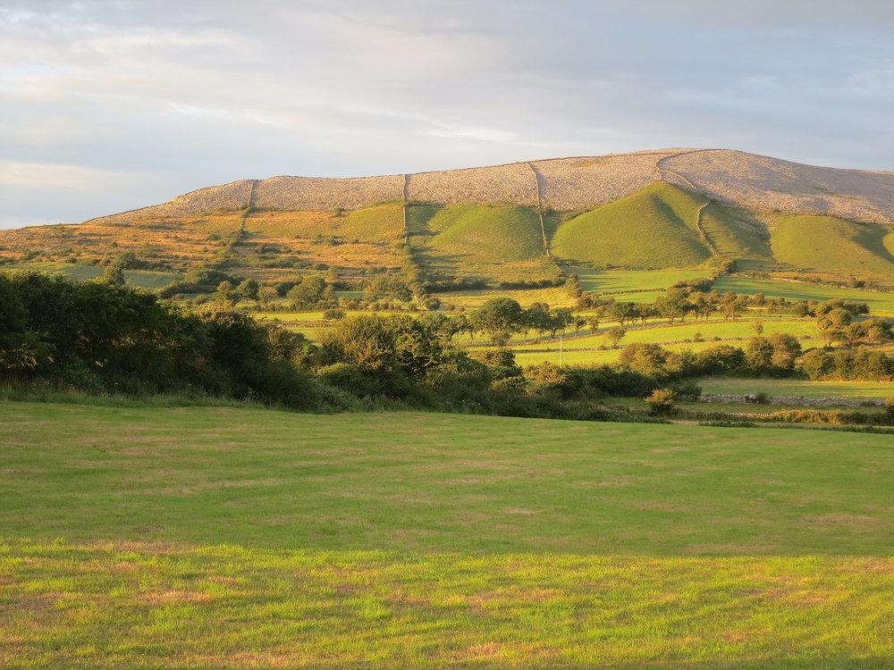 Ireland Burren Pastures