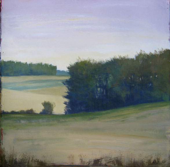Blue Ridge Field (sold)