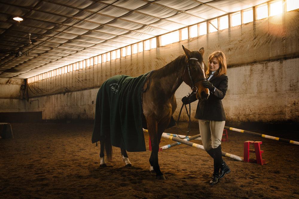 Horse-20160217-_O6A0902-Edit-Portfolio.jpg