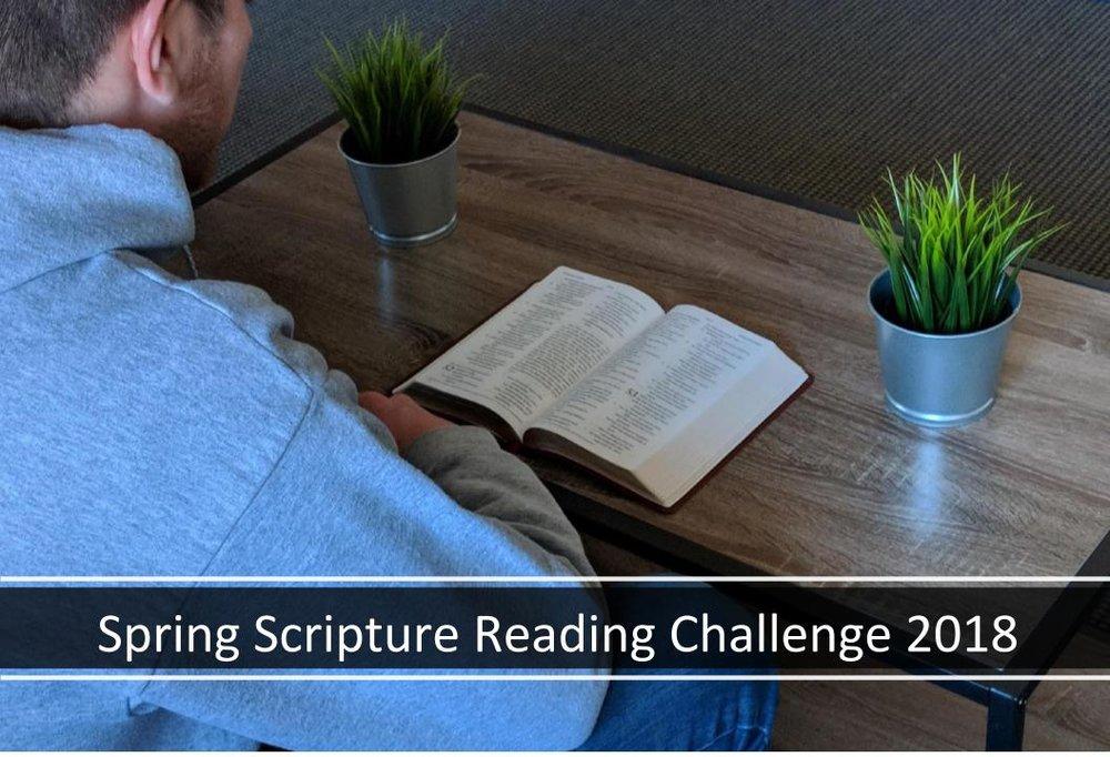 A9 - Spring Scripture Reading Challenge 2018.jpg