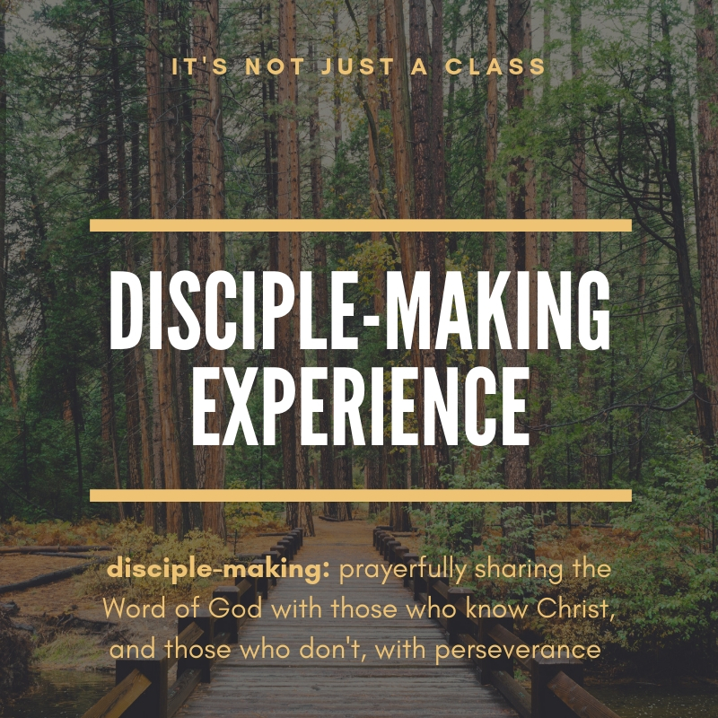 Copy of Disciple-making experience.jpg