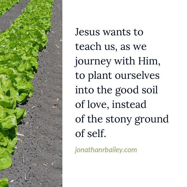 Jesus wants to teach us, as we journey with Him, to plant ourselves into the good soil of love, instead of the stony ground of self.