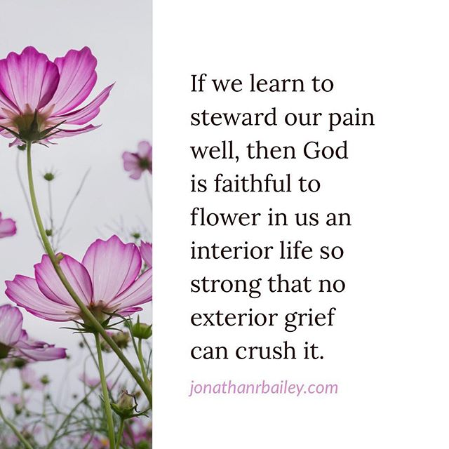 If we learn to steward our pain well, then God is faithful to flower in us an interior life so strong that no exterior grief can crush it.