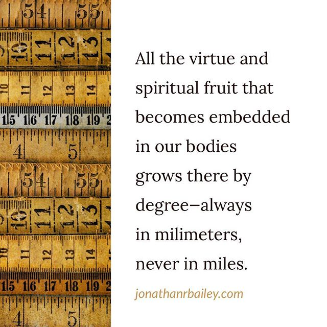 All the virtue and spiritual fruit that becomes embedded in our bodies grows there by degree—always in milimeters, never in miles.