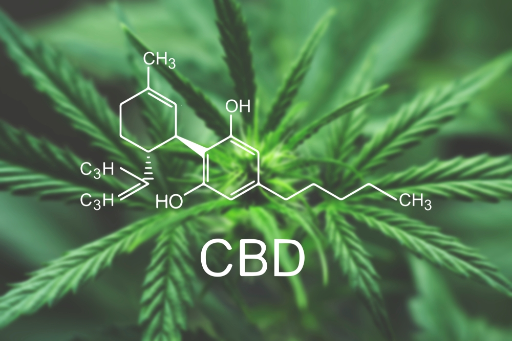 CBD-medical-marijuana.jpg