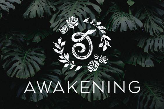 Awakening-Boutique.jpg