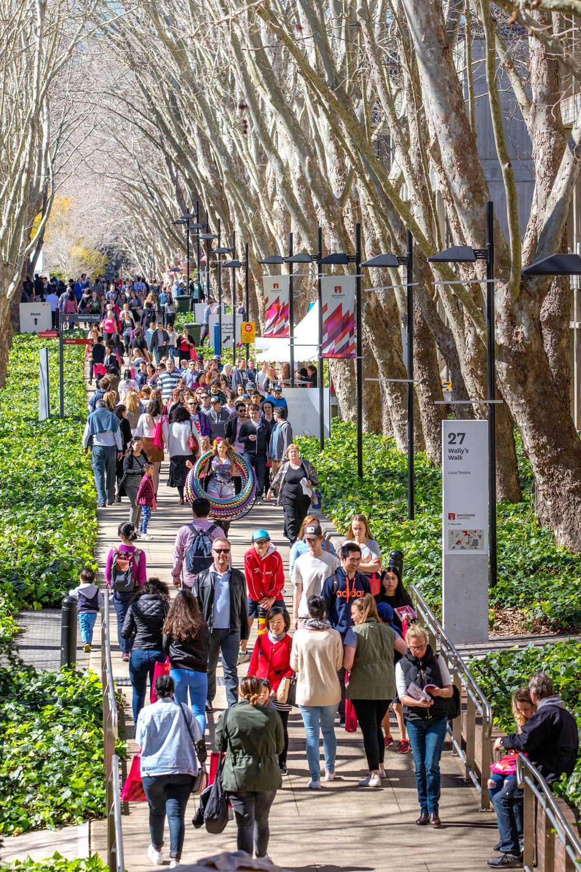 Macquarie University:  Together Team & International campaign   Social Media, Creative Strategy, Media Performance