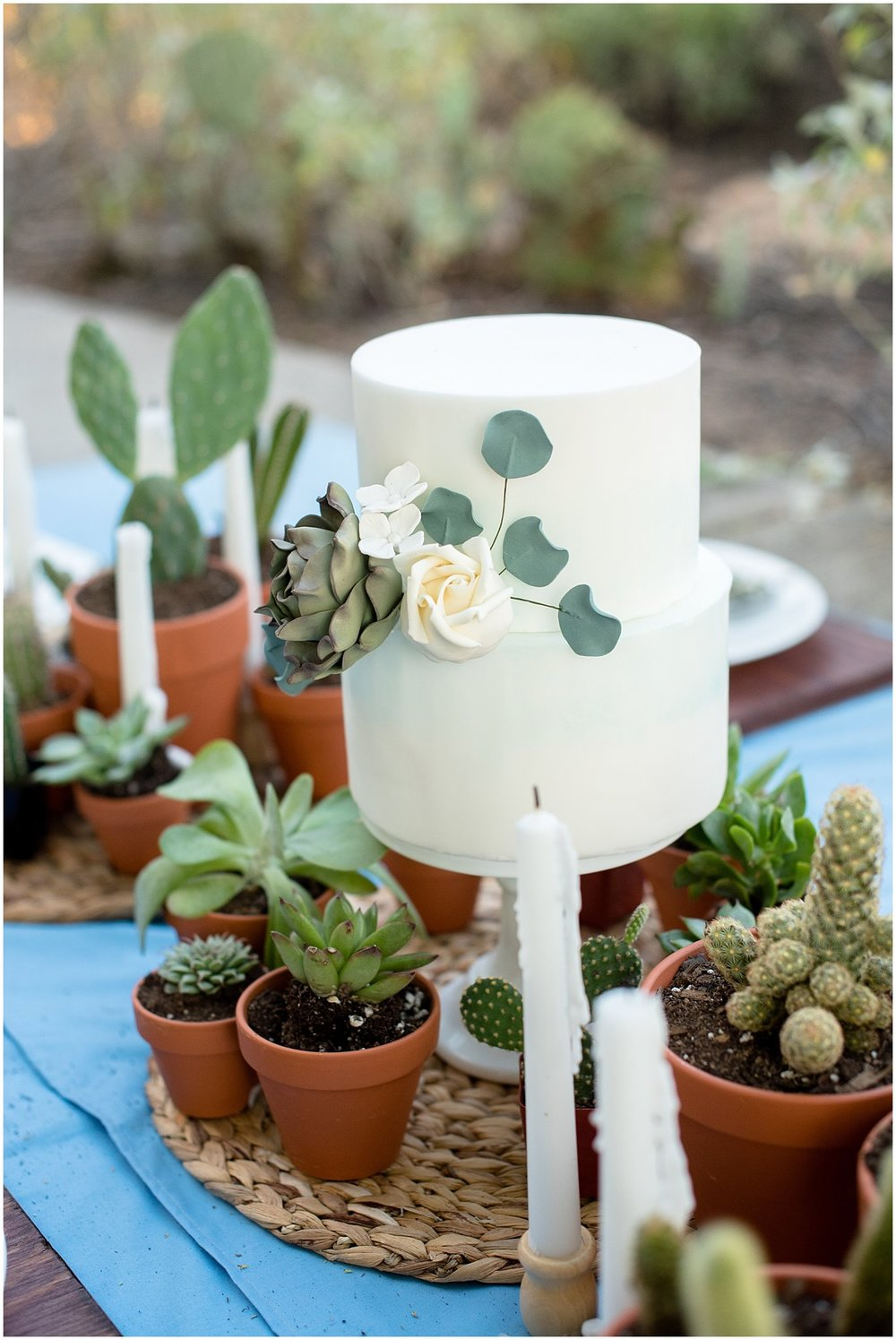 Alia from  Crumbs Cake Boutique  did an absolutely fabulous job with this cake. With a succulent dusted with purple, a rose, some boho flowers, and a blue water color technique, she captured every important element of this shoot.
