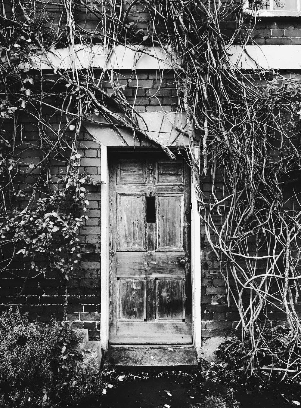 DOOR V