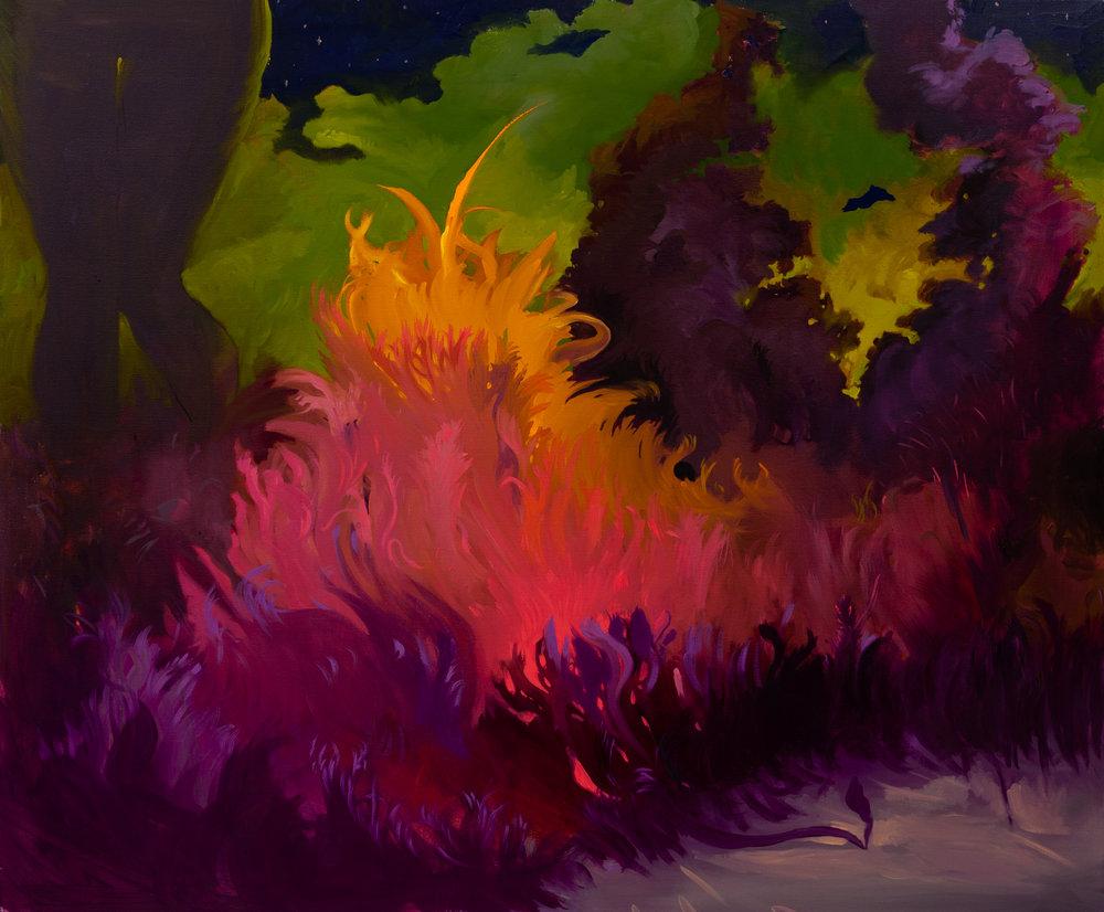 "02_""Glowing Bush"", Oil on Canvas, 2014.jpg"