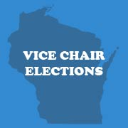 Ted Kinnaman  Co-Chair Marie Bilek    manage executive board elections