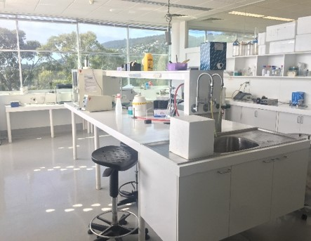 A microbiology laboratory at the University of Tasmania. Photo: Hongshan Shang