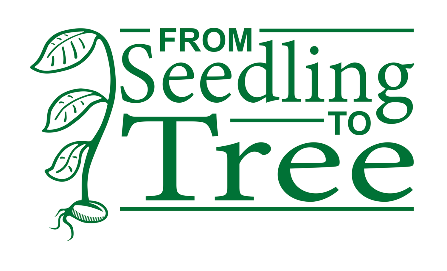 From Seedling to Tree