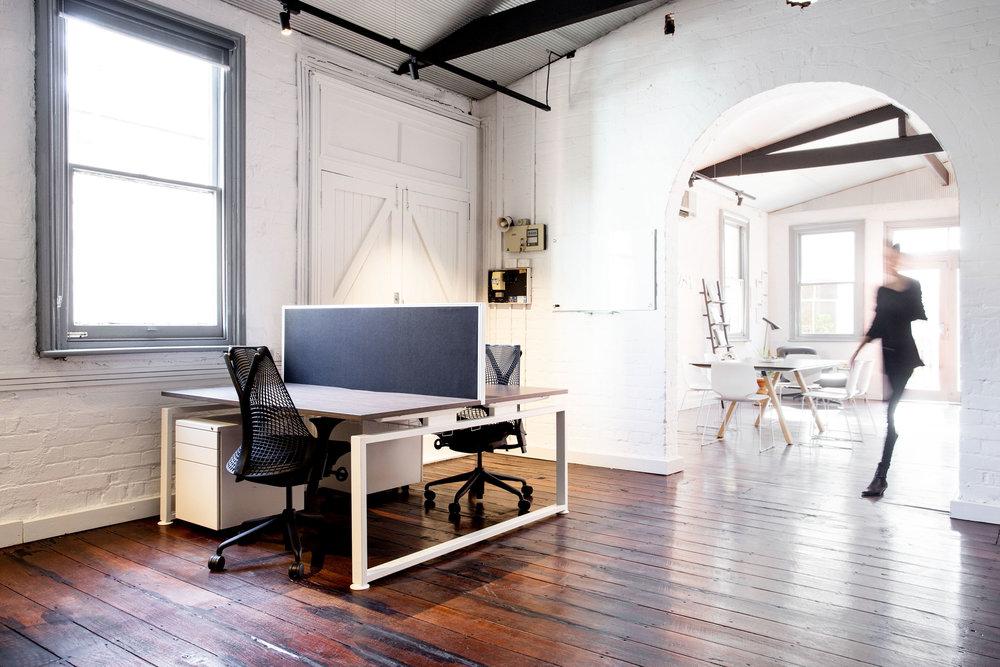 PRINT Zsa Zsa Office Edit 7.jpg