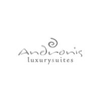 VB-Anronis-Logo.png