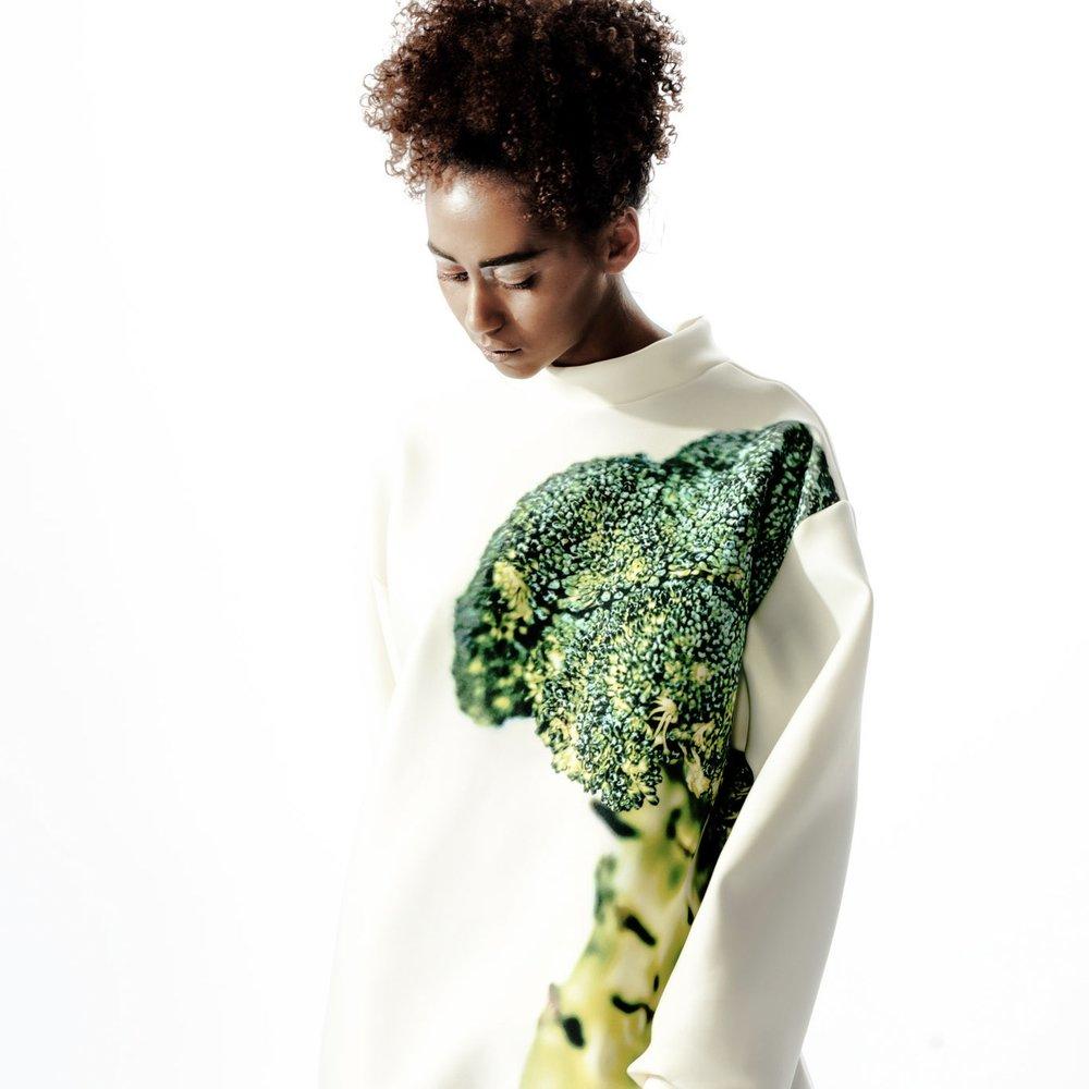 basic_Broccoli.jpg