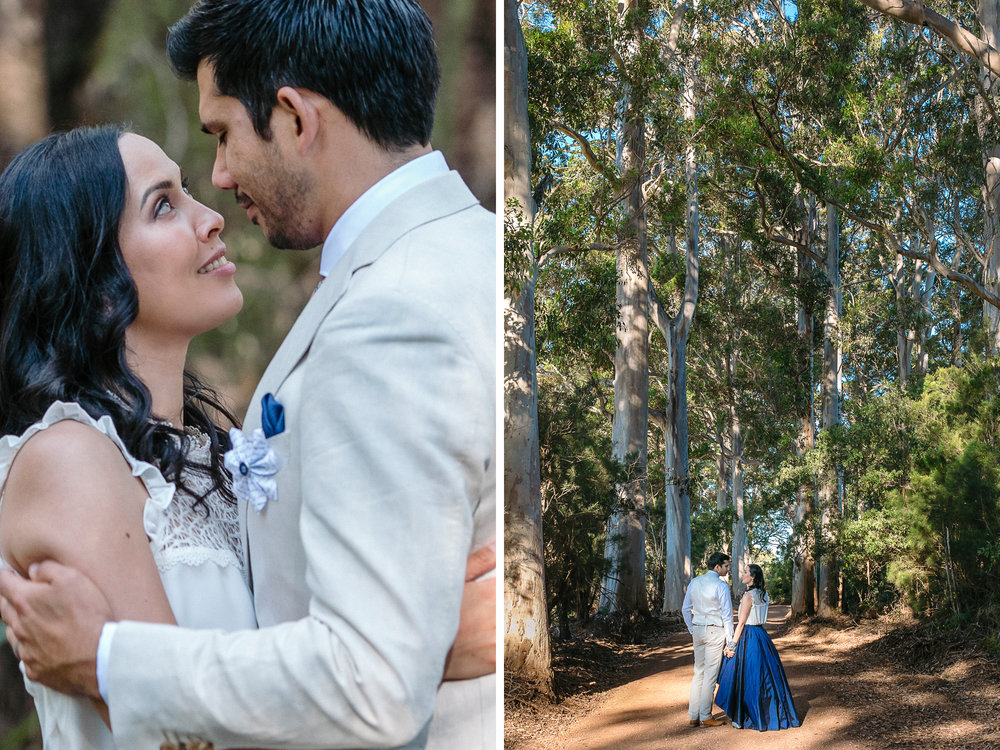 Bride and groom in the tall trees of Denmark WA, where the forest meets the sea