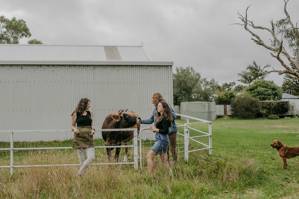 Family portrait on the farm, mum, two teenagers, the jersey house cow and the pet dog