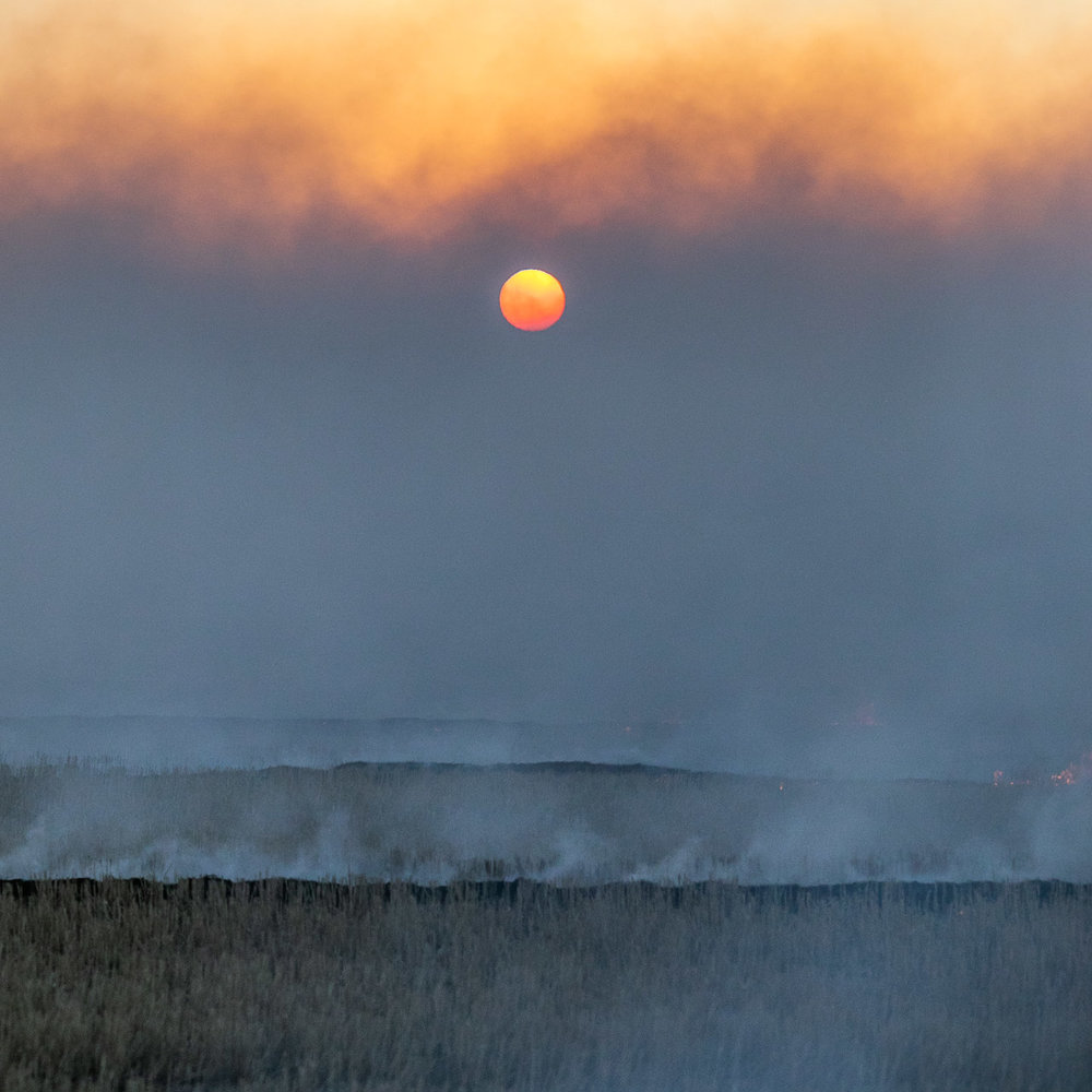 The setting sun, smoke, fire and haze during Windrow Burning in the Wheatbelt, Western Australia