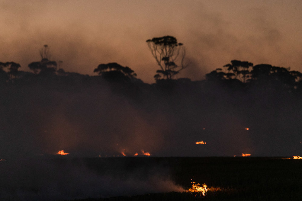 Think smoke and fire mask the native salmon gums during windrow burning in the Wheatbelt, Western Australia