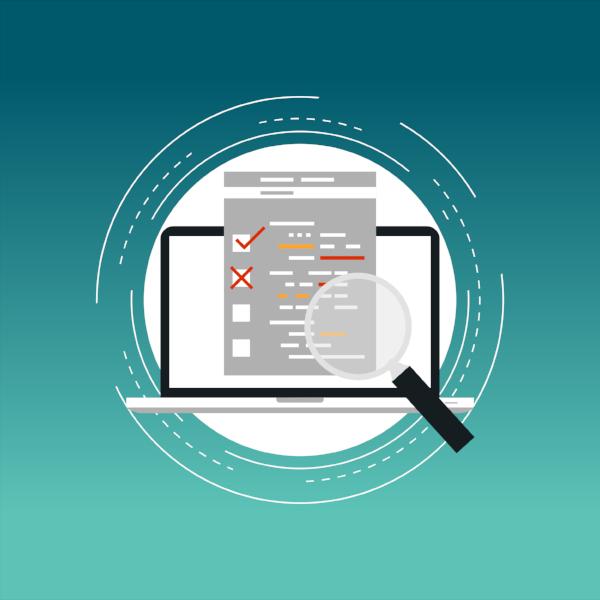 Website audit and user feedback
