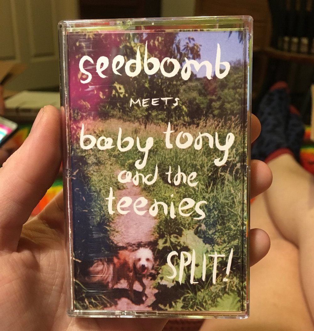 "Seed Bomb/Baby Tony & The Teenies ""Split"" cassette design * Click for more detail *"