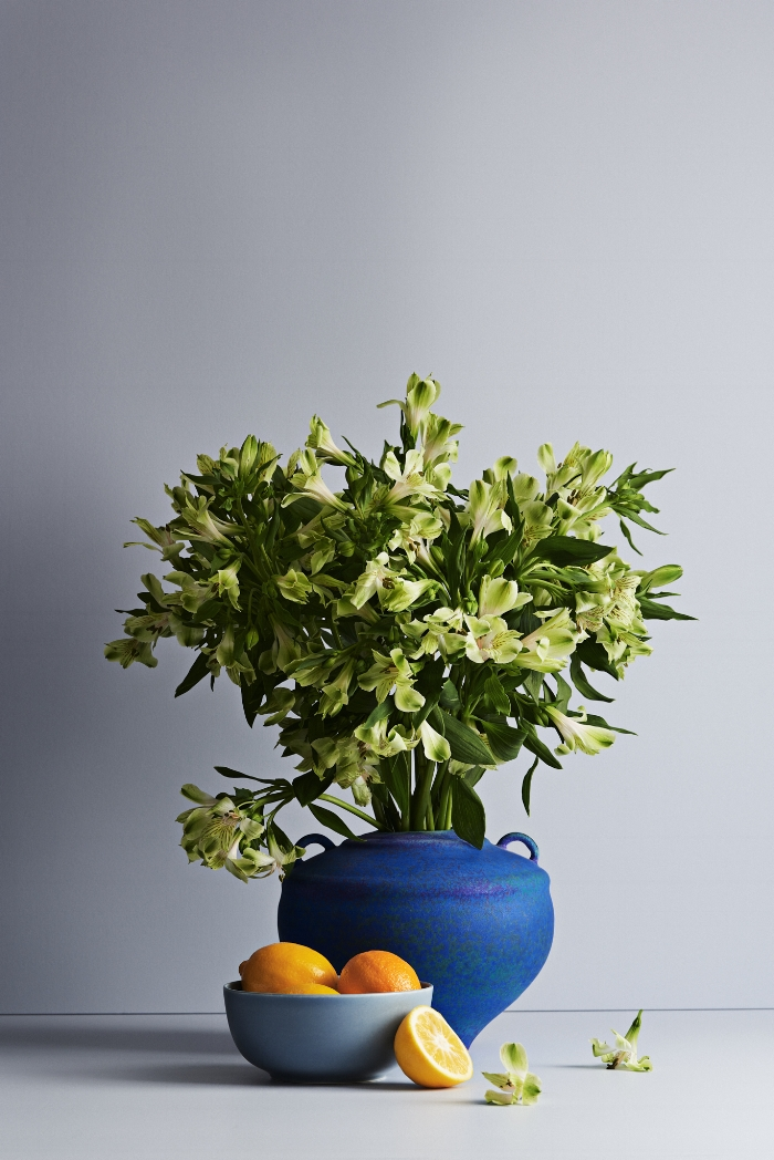 "Alstroemeria {Peruvian Lilies) are grown in West Auckland, and are pictured on a background of Dulux ""Massey""."