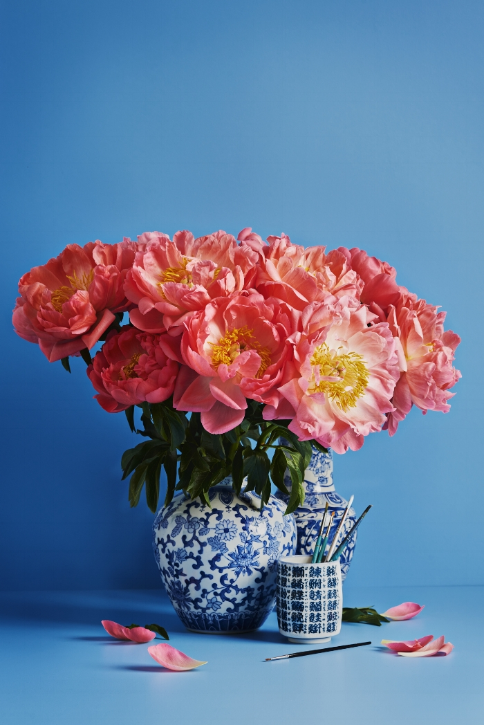 "These massive peonies are grown in Otago (as well as other places in both the North & South Islands), and are pictured on a background of Dulux ""Kaka Point""."
